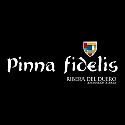 PINNA FIDELIS