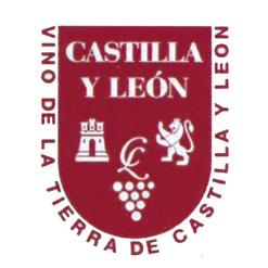 VT CASTILLA Y LEÓN